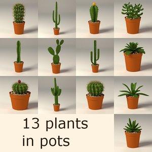 cactuses suculents 3d c4d
