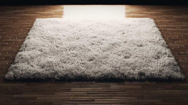 max fluffy rug