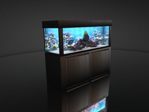 salt water fish tank 3d 3ds