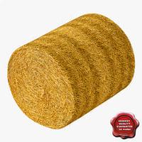 max haystack modelled