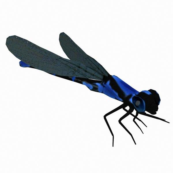 calopteryx damselflies dragonfly 3d max