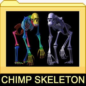 max chimp skeleton bones