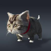 baby cat fur 3d model
