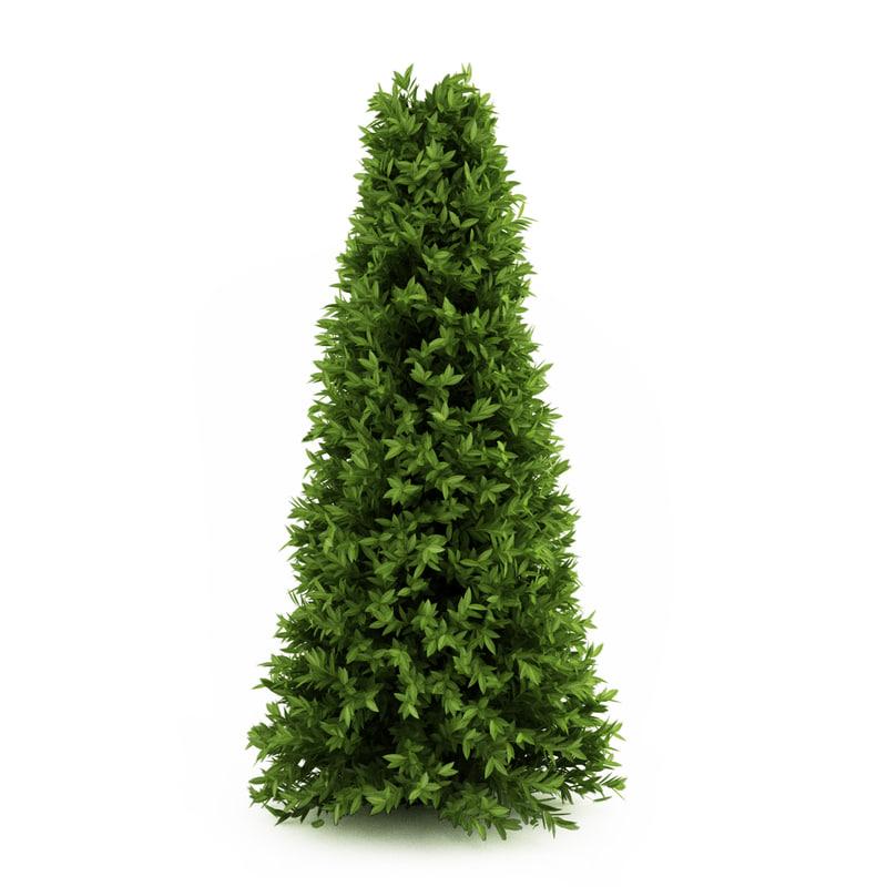 3d plant tree