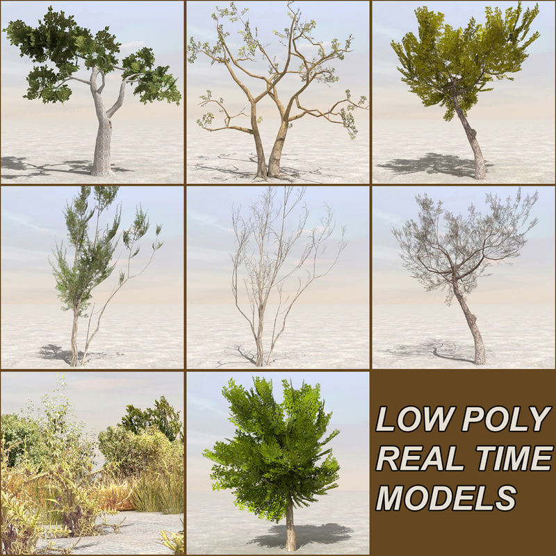 tree plants afghanistan 3d model