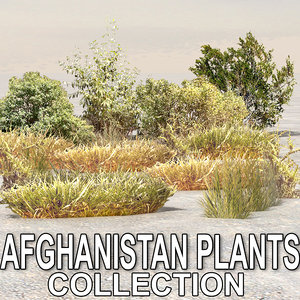 plants afghanistan 3d max