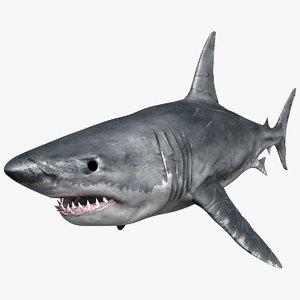 great white shark max