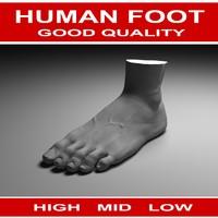 Human foot(2)