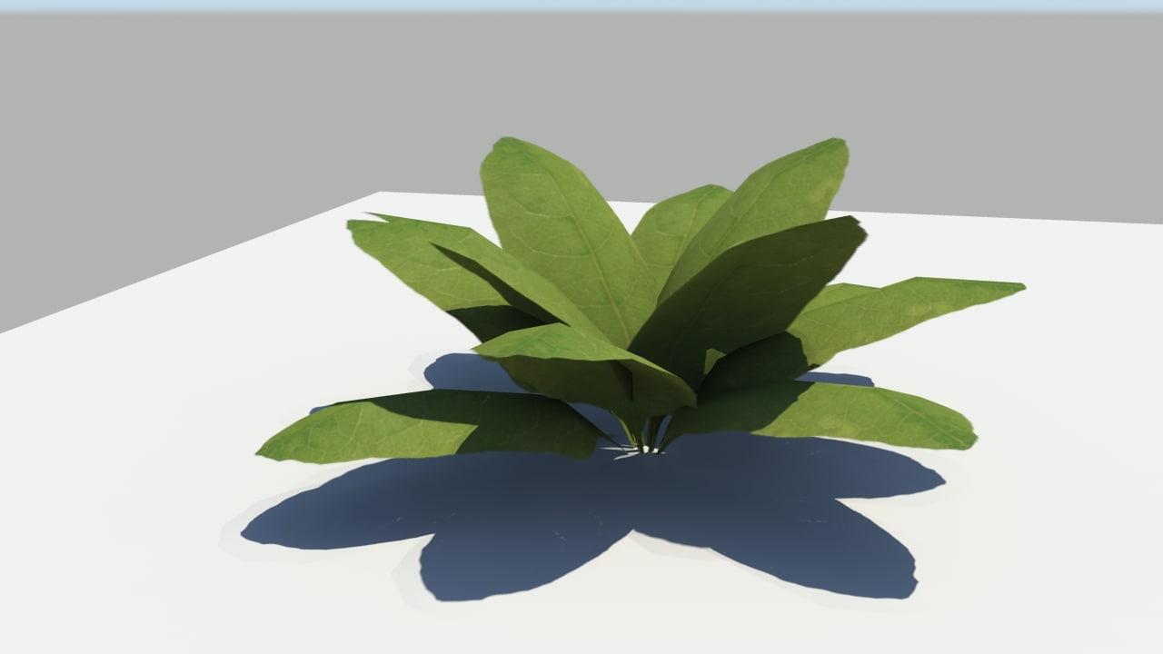 plant leaf obj
