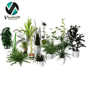 3d plant materials model
