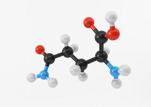 3d amino acids amine model