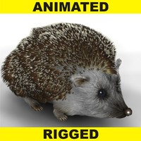 Hedgehog (FUR)