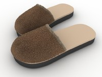 slippers max
