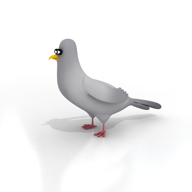 maya cartoon pigeon rigged birds