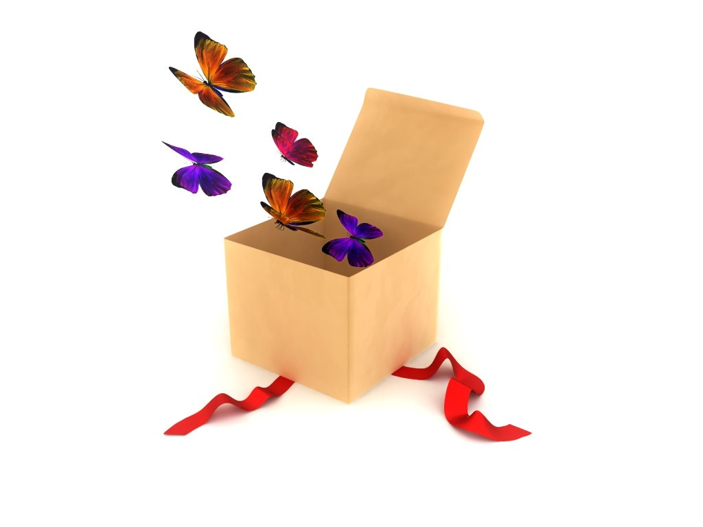 3d box butterflies