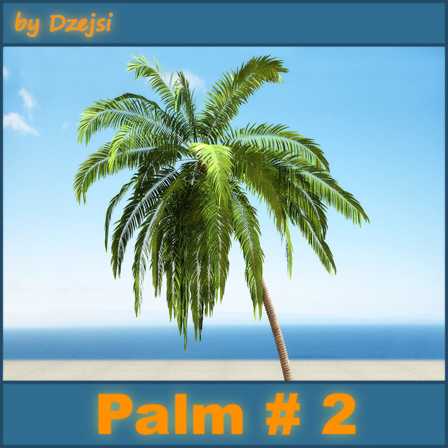 beach palm 3d model