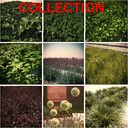 HQ Vegetation Pack (9 Models)