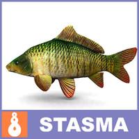 3d model carp