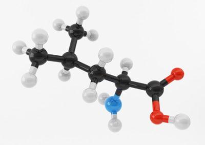 3d amino acids model