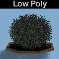 PL Low Poly Sweet Pea Shrub