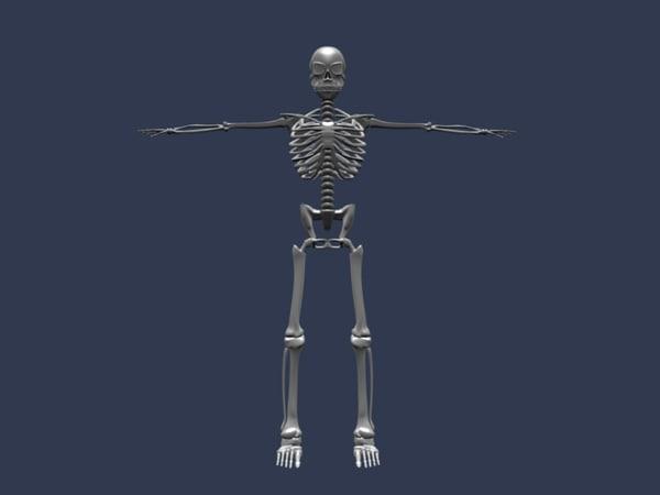 blend rigged skeleton