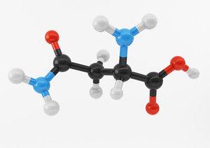 3d model amino acids