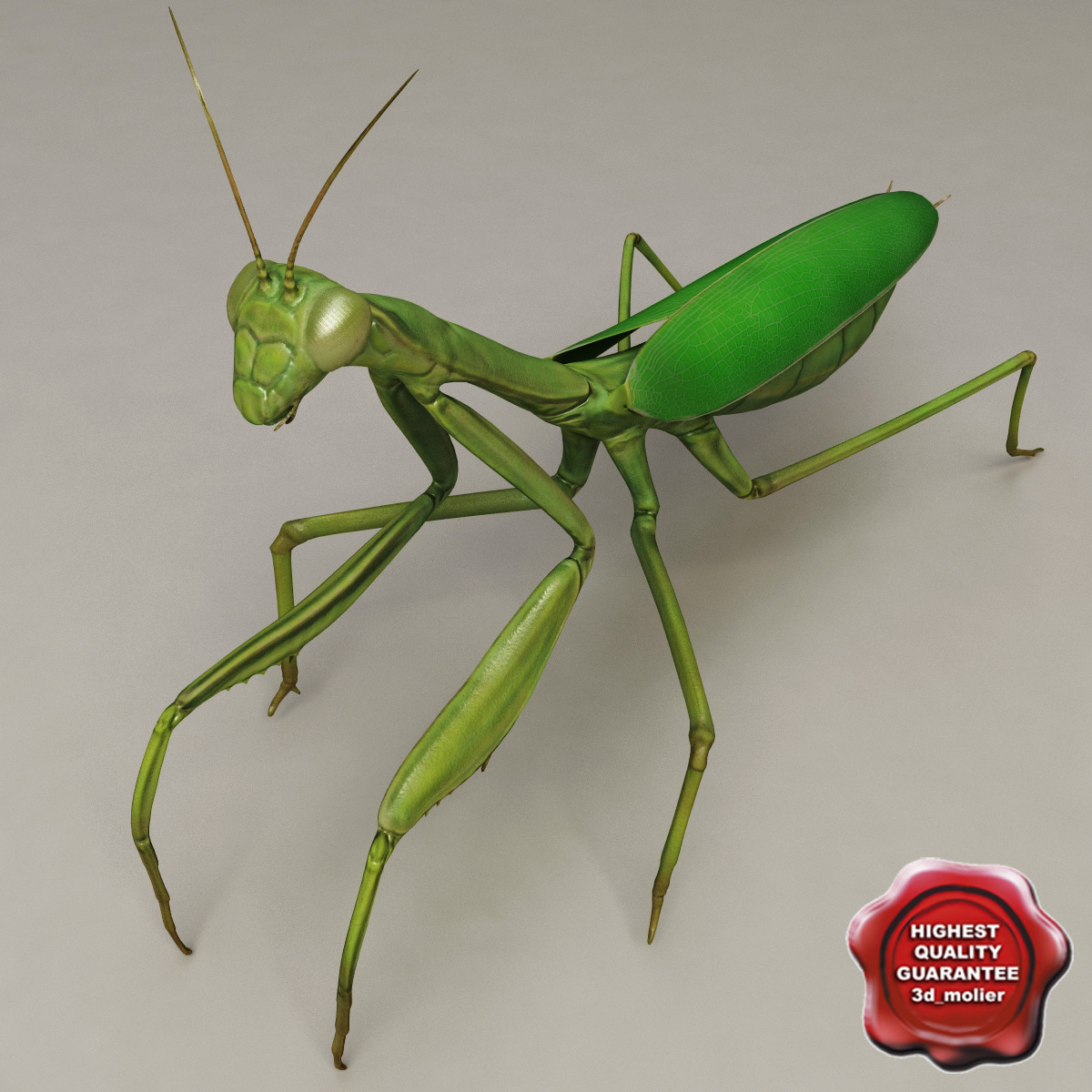 lwo mantis modelled