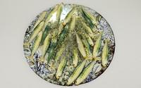 3dsmax sardine