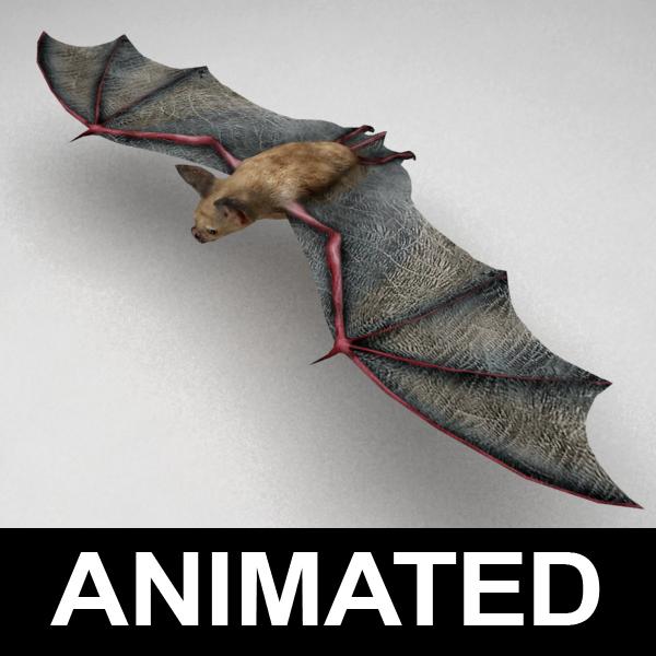 3d model of rigged vampire bat fly animation