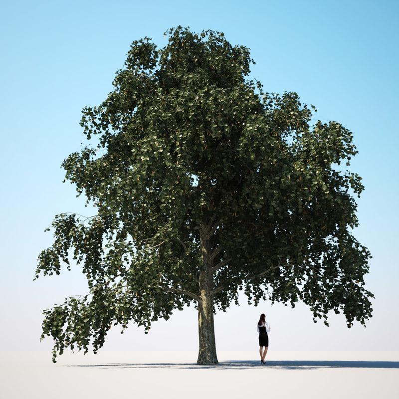 3dsmax linden lime tree -