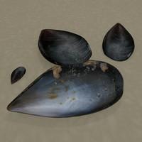 mussel 3d blend