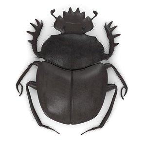 scarabeus typhon 3ds