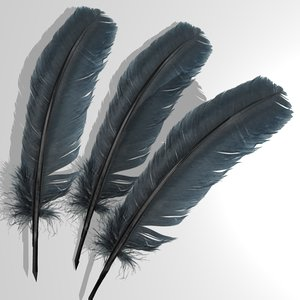 bird feathers 3d model