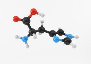 3ds max amino acids