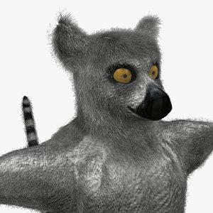 ring tailed lemur ma