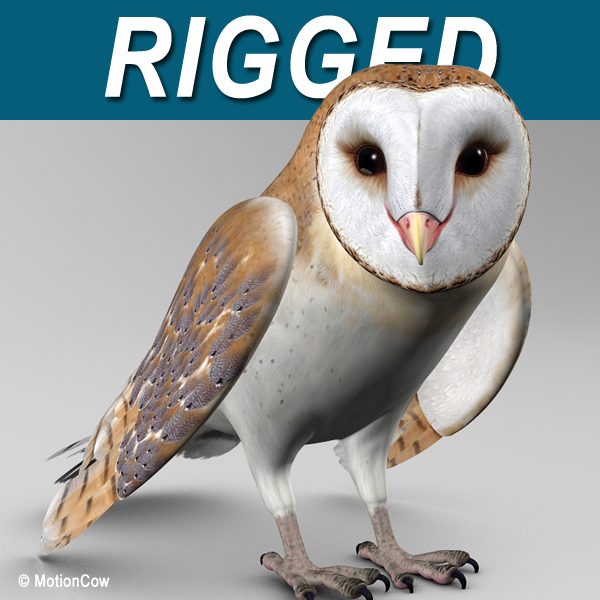 realistic barn owl folded 3d model