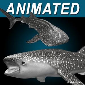 3d model whale shark