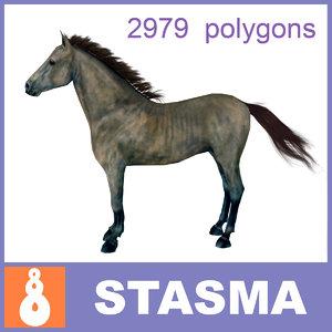 max andalusian horse
