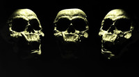 skull lwo