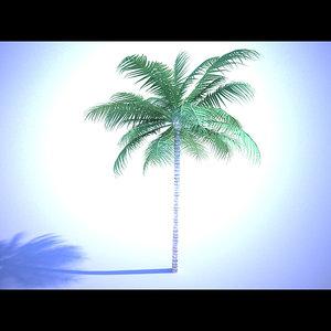 max palm tree