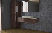 bathroom 3d max