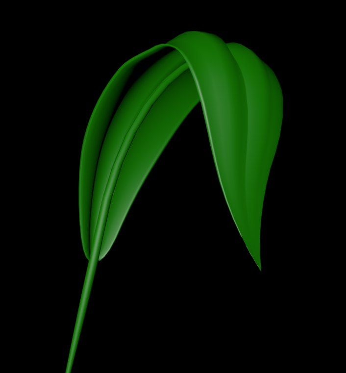 cinema4d leaf