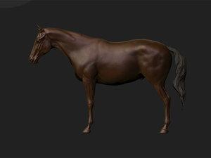 3d model stallion mare