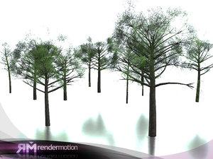 d2 c2 02 tree 3d model