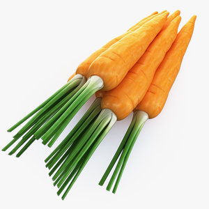 3d model carrot use