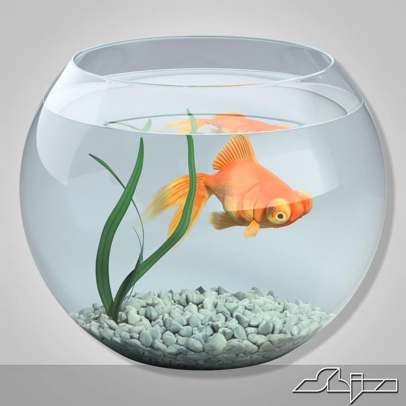 3dsmax aquarium gold fish