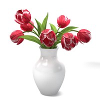 Red Tulips Bouquet In The Vase standart materials