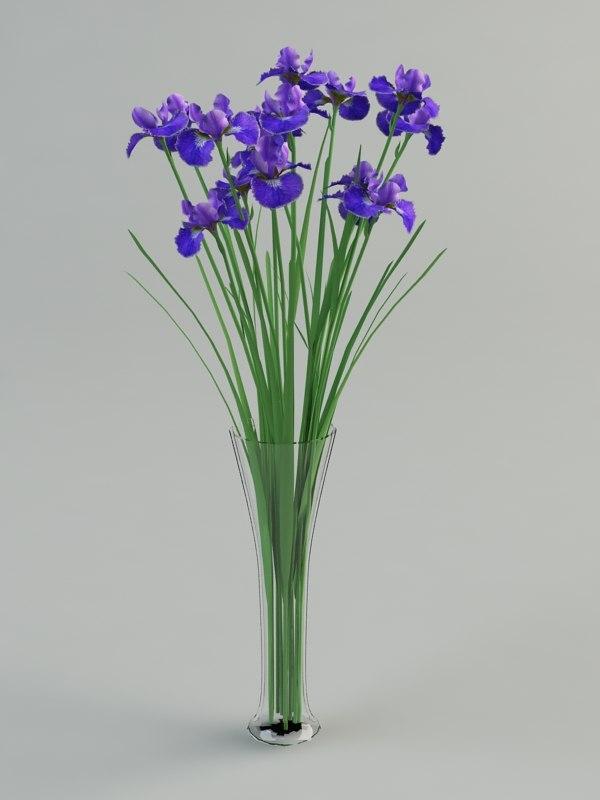 3d max iris vase