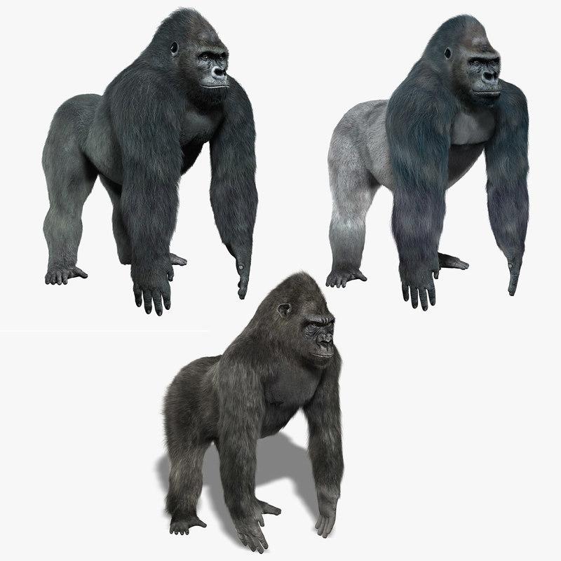 obj gorillas fur