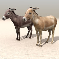 donkey arab carts 3d c4d